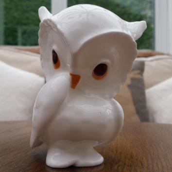 Royal Osborne China Owl